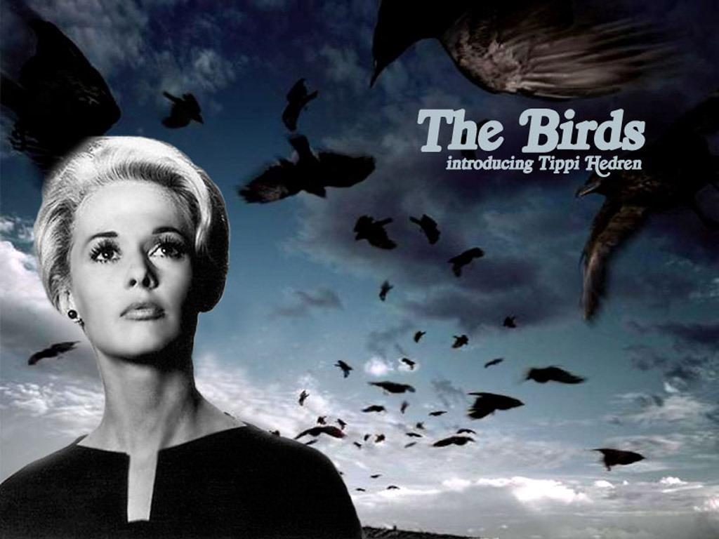 birds-the-1963-39318-11